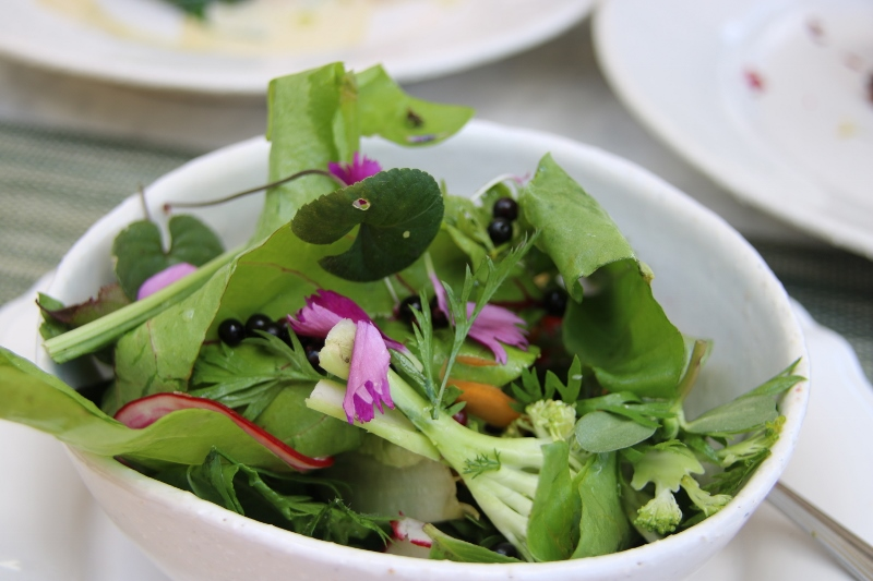 The werf salad