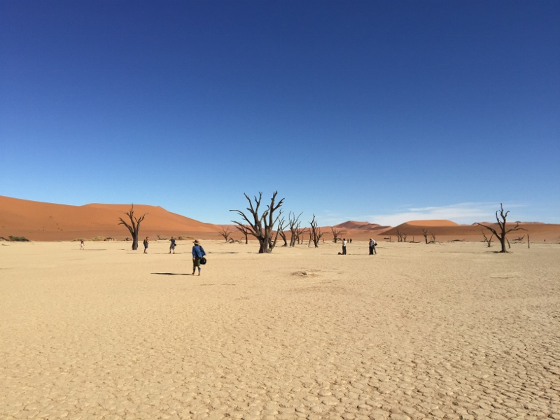 Deadvlei from the foot of the dune