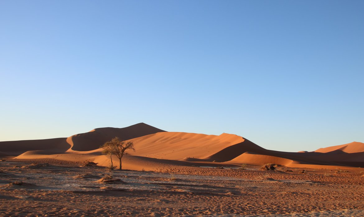 Conquering Big Daddy Dune In Sossusvlei Namibia