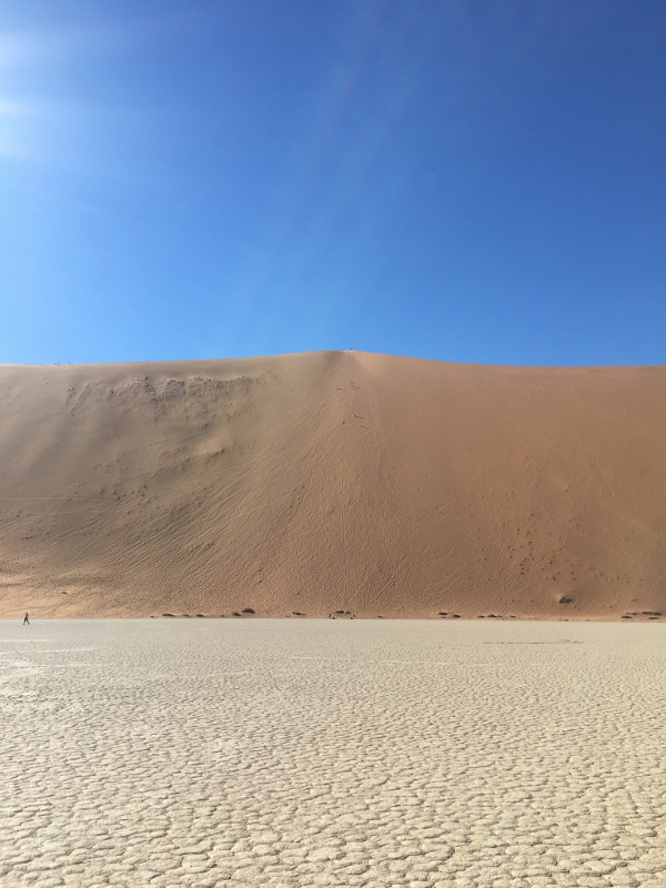 Looking back at the dune