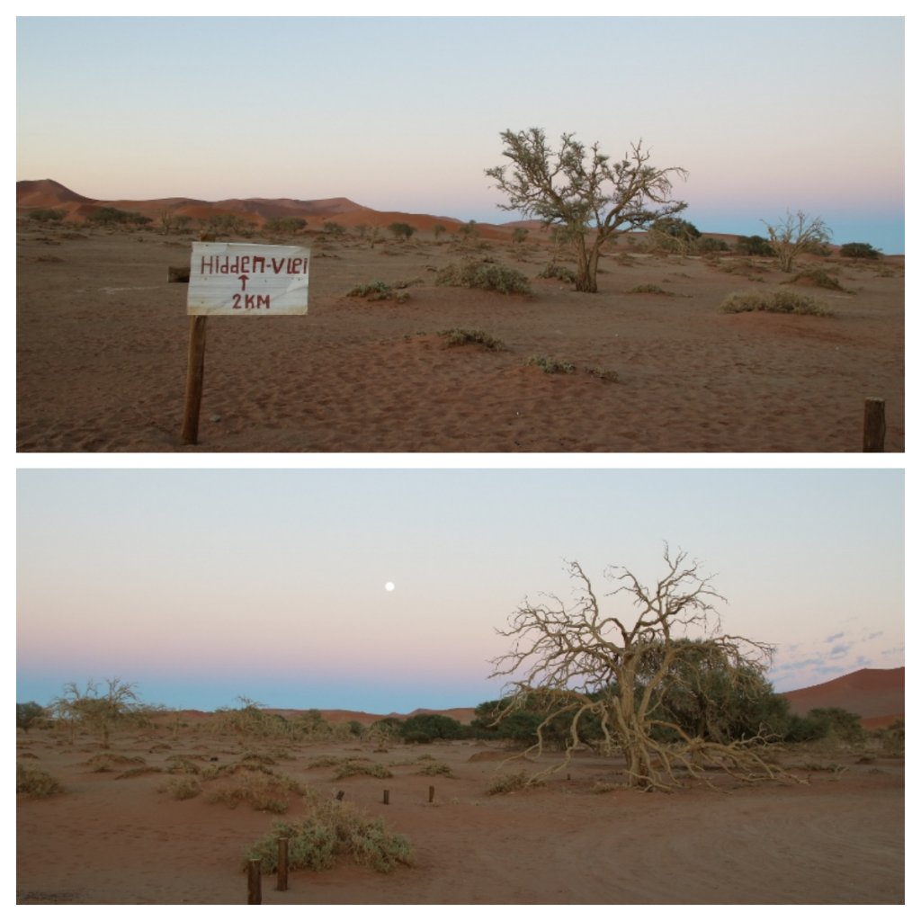 Hidden vlei directional signage