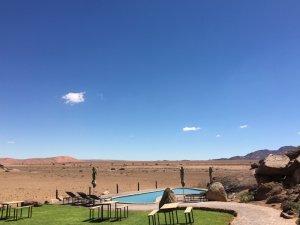 Communal Pool area Desert Quiver